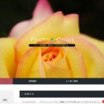 これは便利。色で写真が選べるカテゴリーがある『Photo Chips』